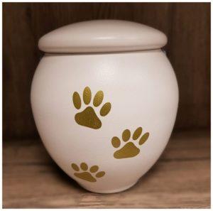 urna-cremazione-cani